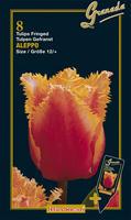 Tulipany Crispa