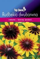 Rudbekia dwubarwna
