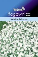 Rogownica